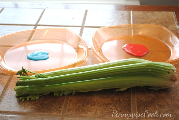 6 Kid Friendly Craft: Celery Art