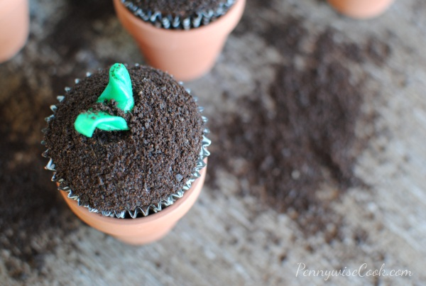 In The Garden Cupcakes 1 In The Garden Cupcakes