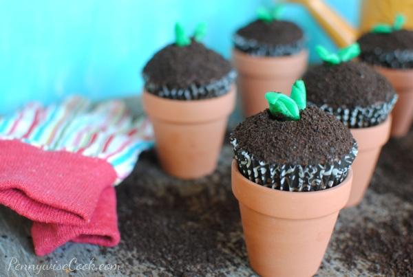 In The Garden Cupcakes